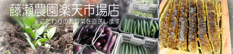 藤瀬農園楽天市場店:畑でもぎ取って食べることが出来る野菜達です
