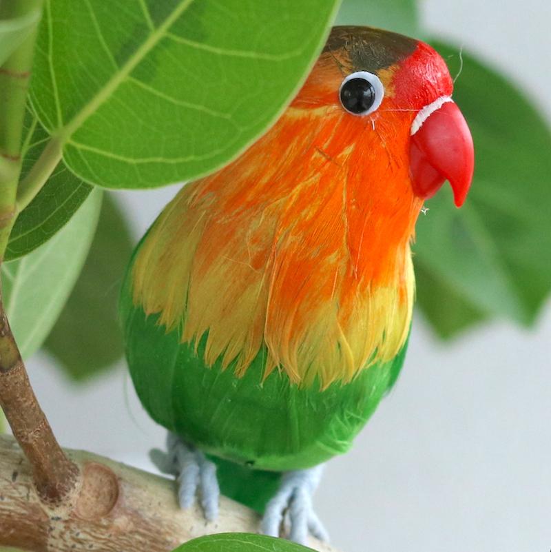 観葉植物にとめたり お部屋のアクセントに 定番キャンバス オススメ 癒し ディスプレイ 商業ディスプレイ ショーウインドウ ナチュラル ガーデン プレゼン ウェディング 結婚式 ウェルカム 森ガール 《リアル》ボタンインコ ラブバード インテリア 衛生的 コレクション お世話いらず 新着セール とり フェイク トリ 個性的 鳥のいる暮らし 鳥好き bild 愛鳥家 鳥 鳥の置物 オウム