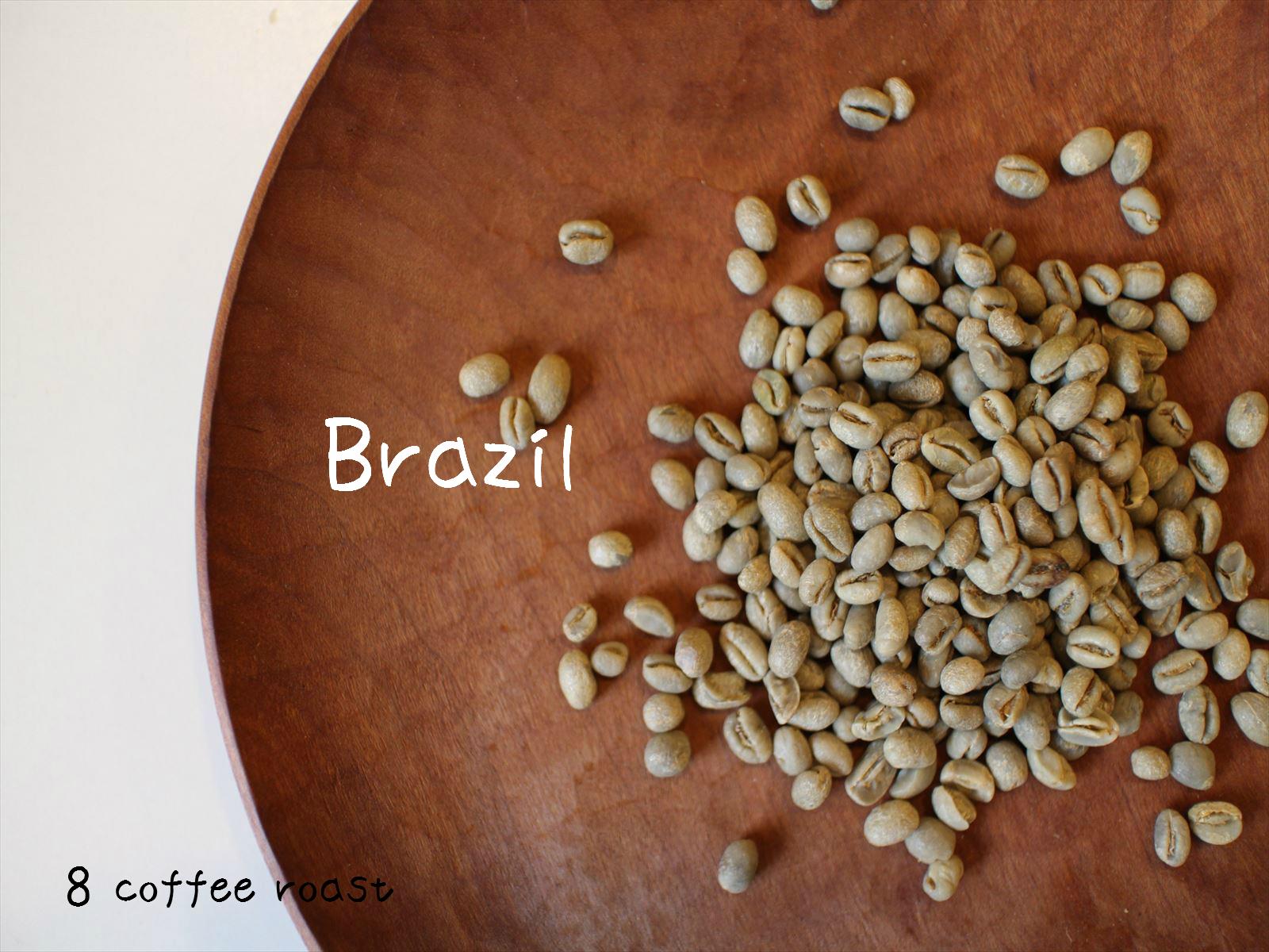 コーヒー生豆 送料込 ブラジル 大注目 ピーベリー 50g 内容量