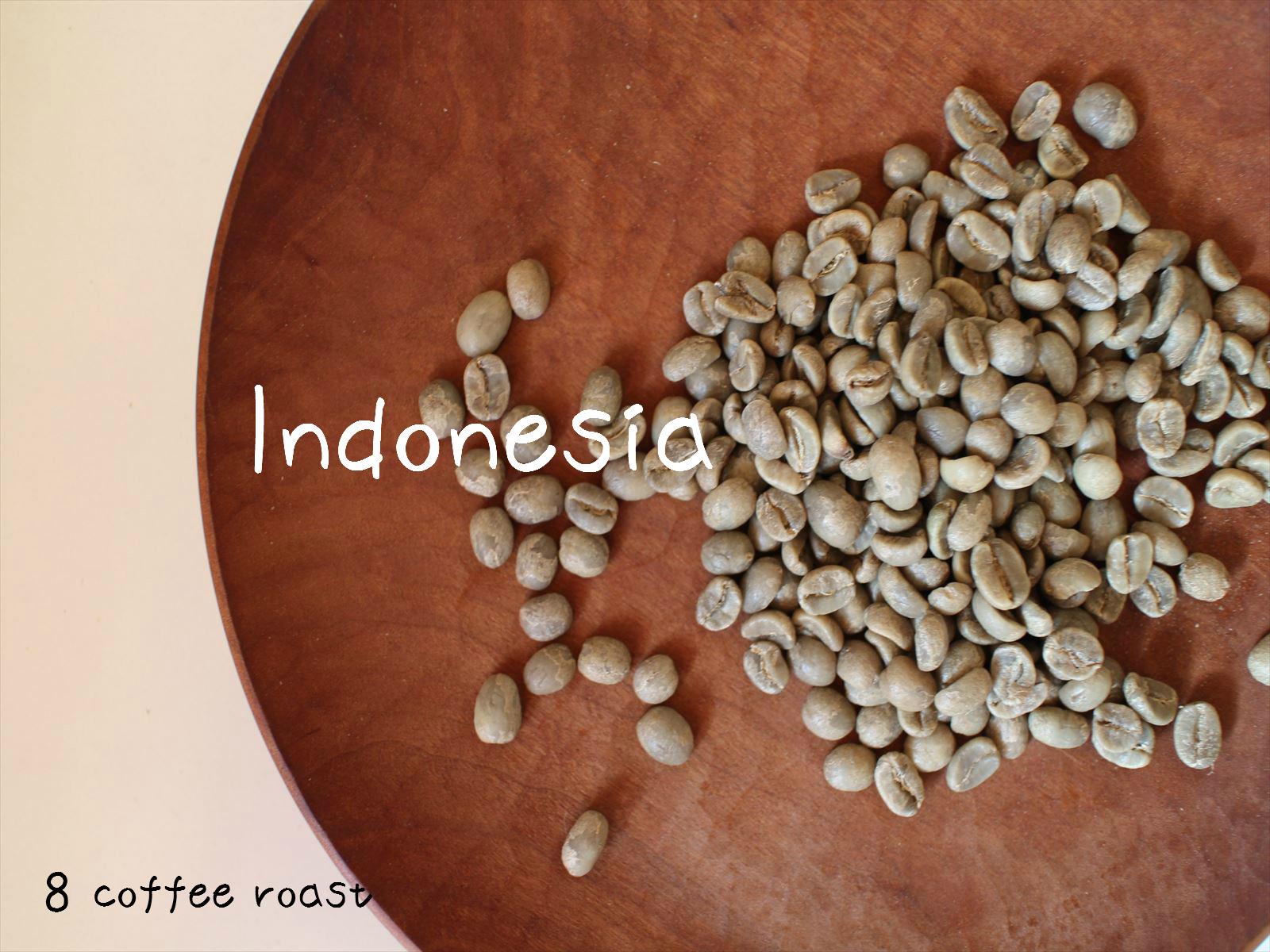 新品 送料無料 コーヒー生豆 インドネシア バリ 神山 ハニー 50g 出荷 内容量