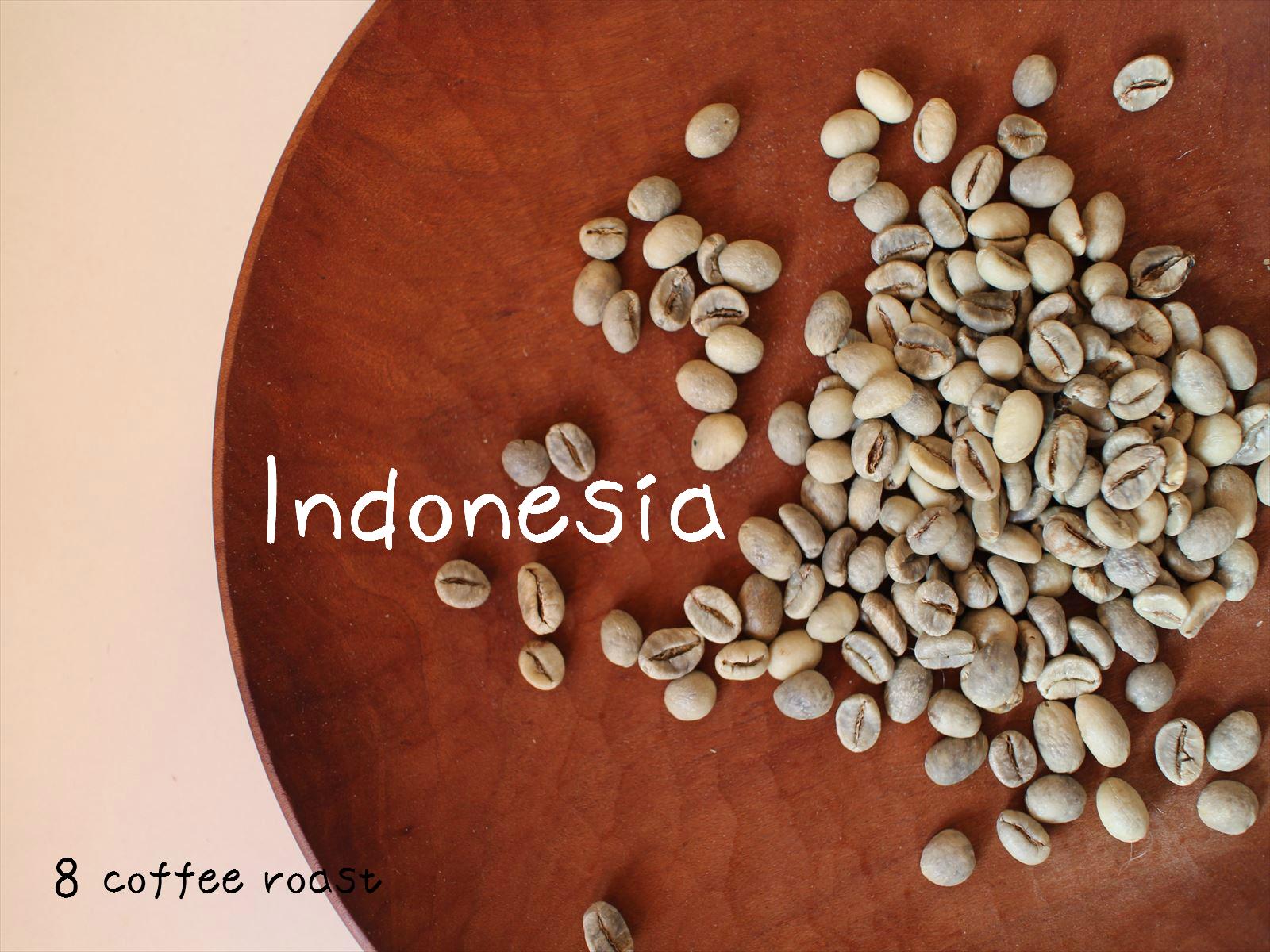 コーヒー生豆 定価 インドネシア ジャバロブ WIB-1 50g 内容量 特価品コーナー☆