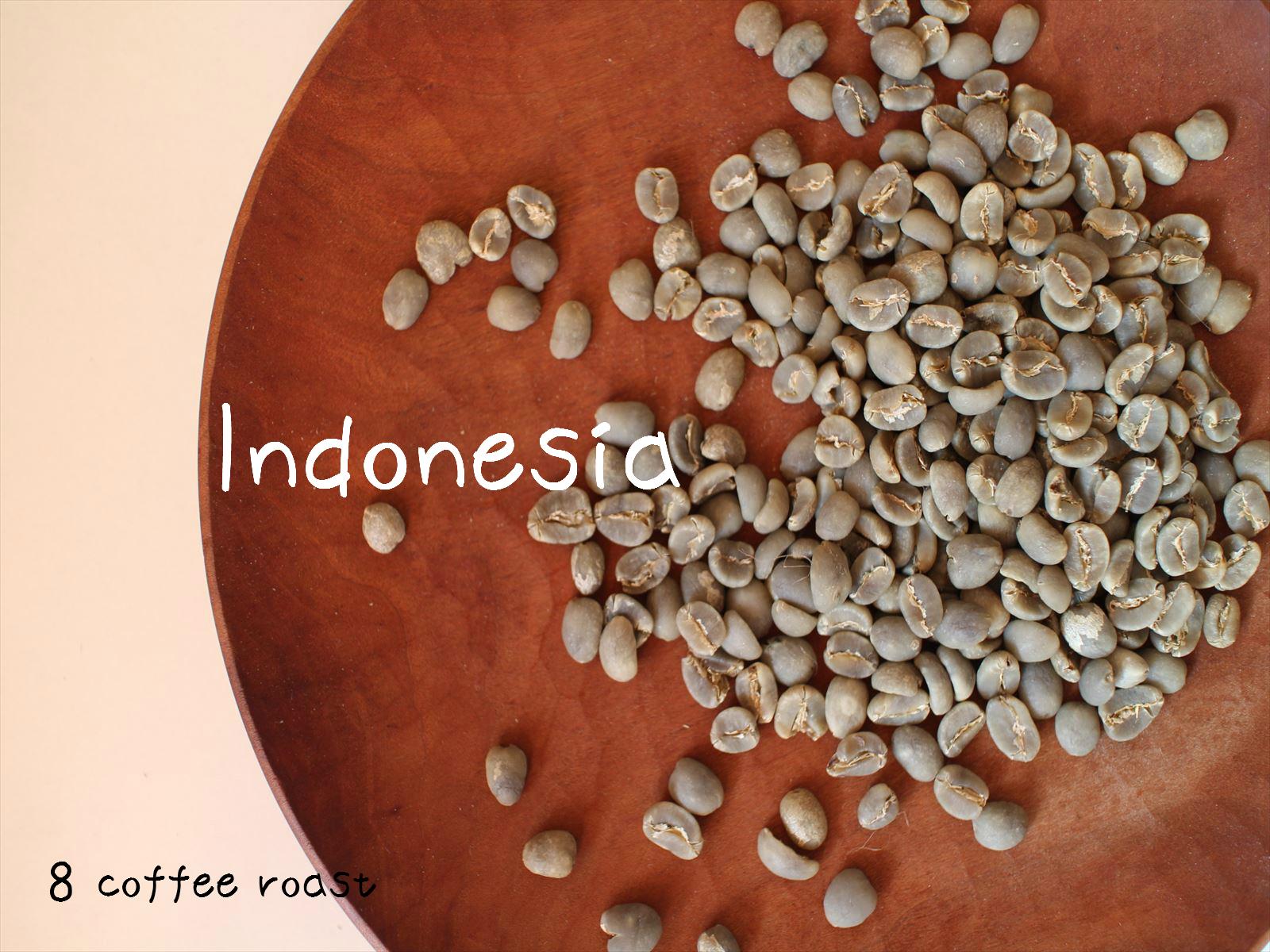 ショップ 送料無料 大好評です コーヒー生豆 業務用 インドネシア マンデリン 4kg 内容量 G-1 2kg×2袋