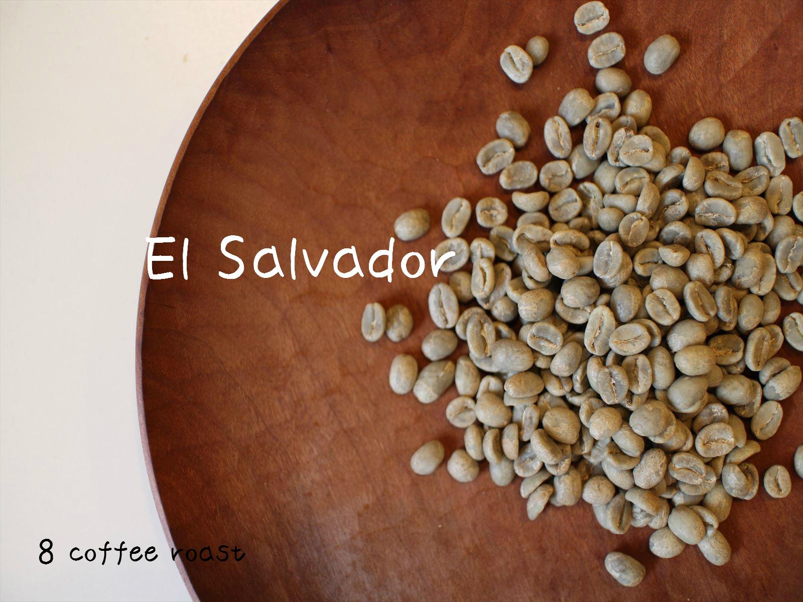 スピード対応 全国送料無料 コーヒー生豆 超特価SALE開催 エルサルバドル サンタリタ農園 内容量 50g