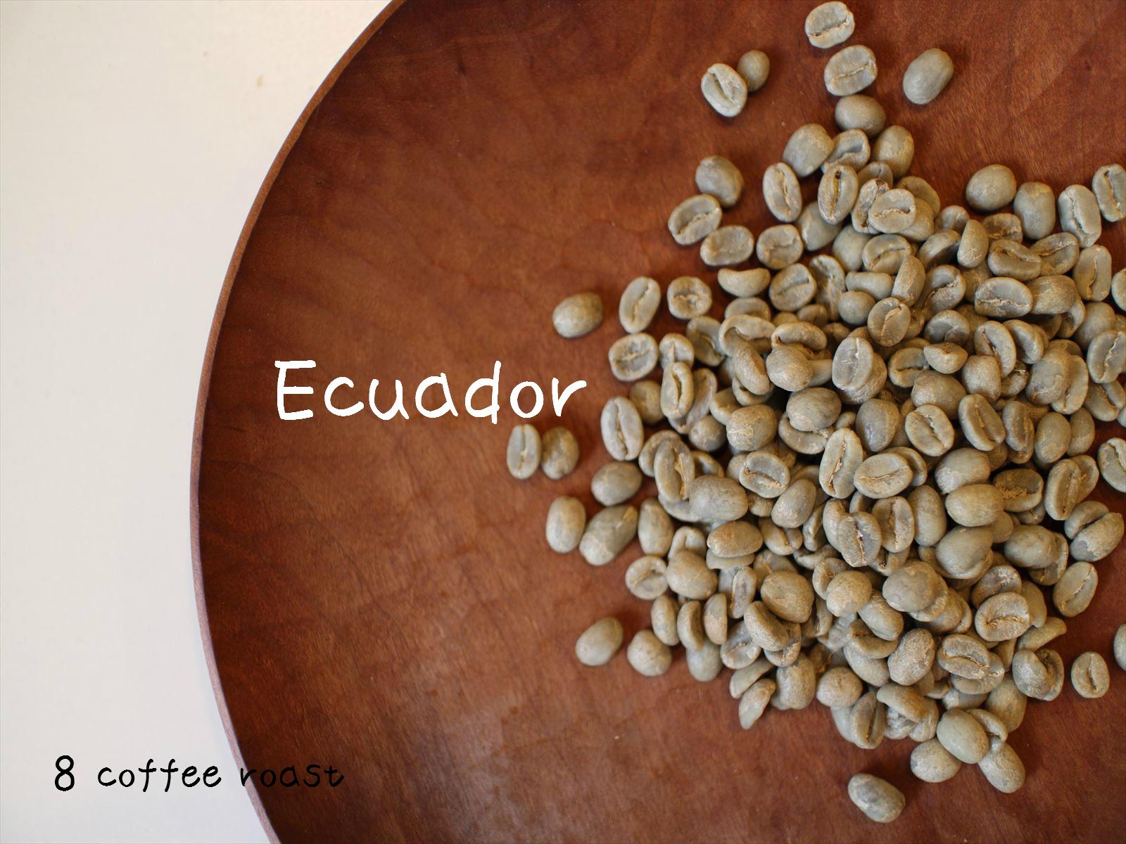 コーヒー生豆 エクアドル 推奨 グレートマウンテン 内容量 50g 正規取扱店