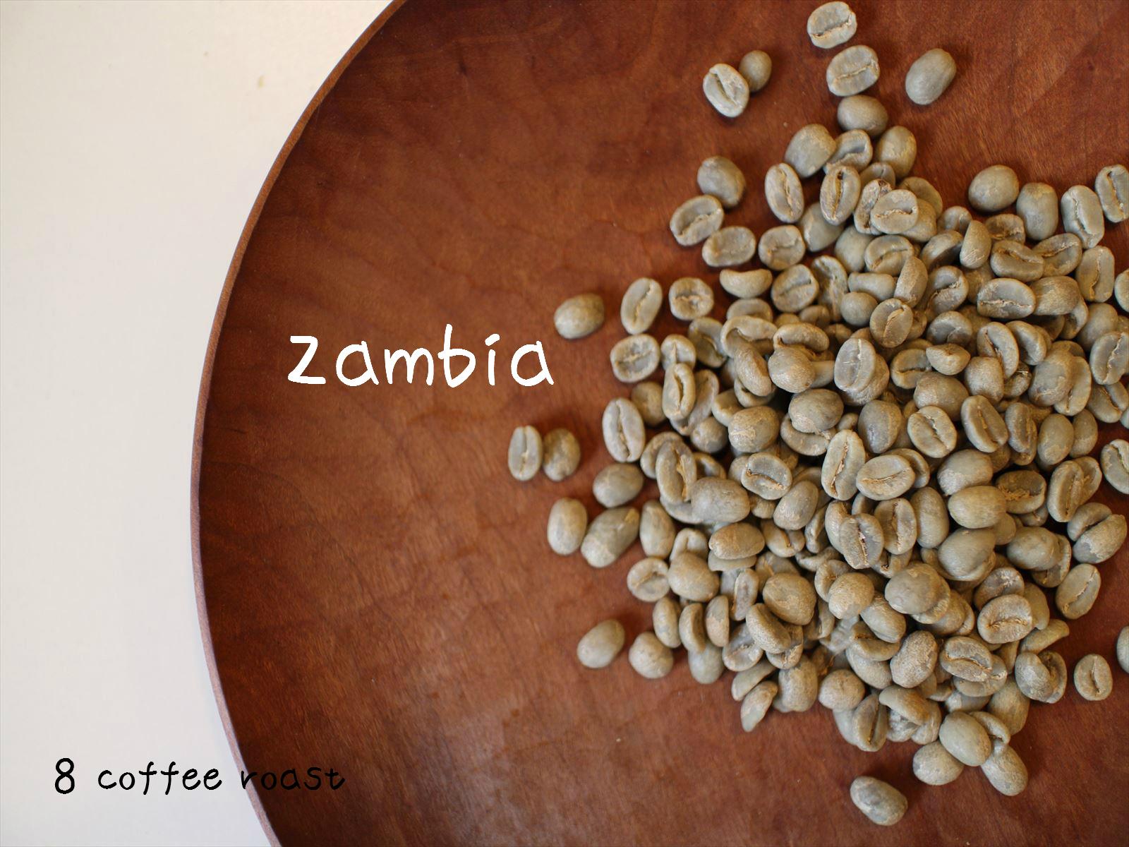 ザンビア 復活♪ 再入荷! 【コーヒー生豆】ザンビア テラノバ農園 <内容量>50g