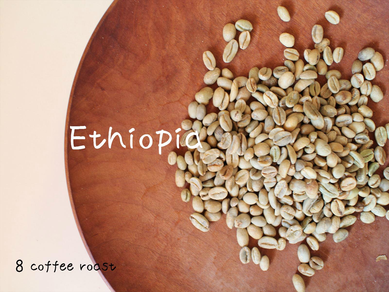 コーヒー生豆 エチオピア 定価の67%OFF 祝開店大放出セール開催中 モカシダモG-4 50g 内容量