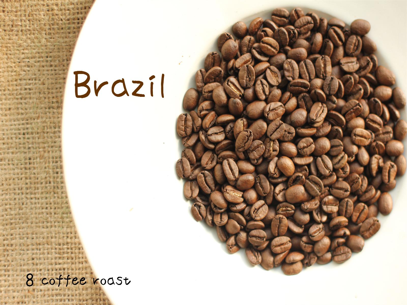コーヒー焙煎豆 ブラジル トミオフクダ樹上完熟 内容量 80g バウー農園 再入荷/予約販売! 5☆好評