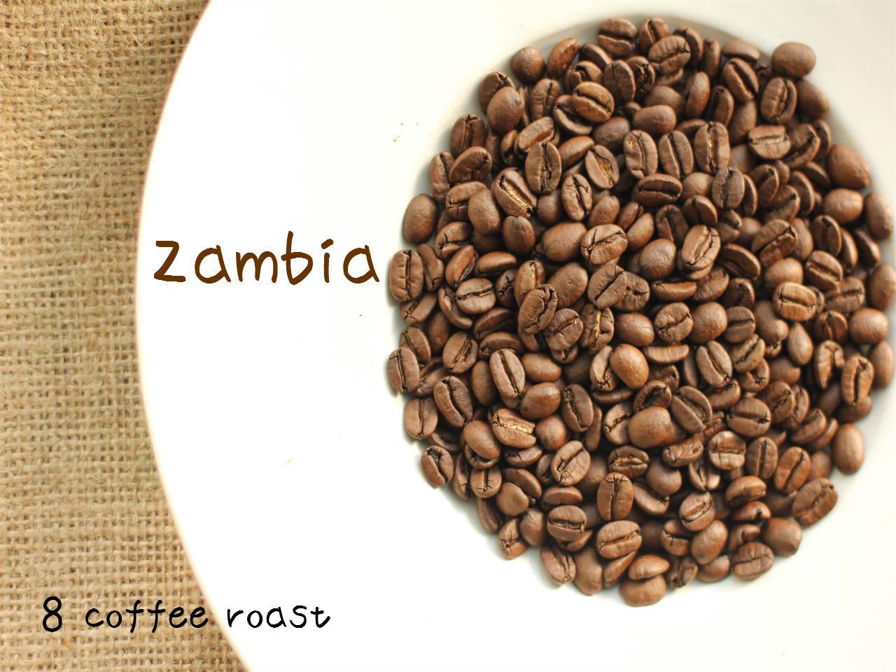 長らくお待たせしました ザンビア 復活 再入荷 ハイクオリティ テラノバ農園 内容量 ギフト プレゼント ご褒美 コーヒー焙煎豆 80g