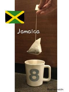 【三角 テトラパック コーヒー】【送料無料 ジャマイカ ブルーマウンテン <内容量>10g×180パック (30パック X 6袋)