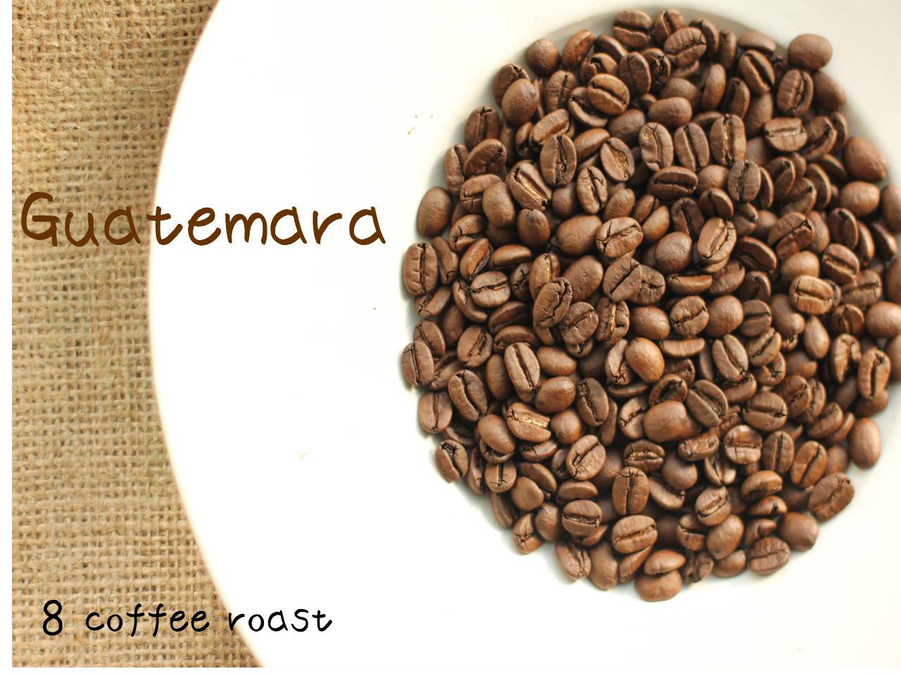 【コーヒー焙煎豆】ペルー マチュピチュ 天空 <内容量>80g