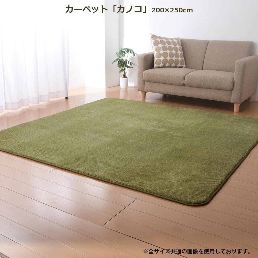 ラグ ラグマット ダイニングラグ マット 絨毯 カーペット じゅうたん 厚手 おしゃれ 北欧 安い ふかふか ふわふわ 200×250 3畳 グリーン