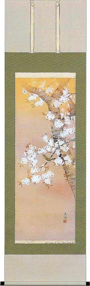 掛け軸 桜に小禽 河村東陽 掛軸 全国送料無料 【smtb-k】【ky】