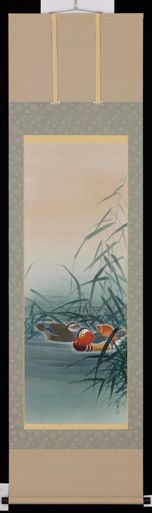 掛け軸 鴛鴦 橋本紹真 美術年鑑掲載作家 鴛鴦 掛軸 全国送料無料【smtb-k】 橋本紹真【ky【smtb-k】【ky】】, WAネットショップ:412b5b37 --- citi-card.co.uk
