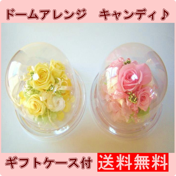 Preserved Gift Offerings Bon Flower Tray Flowers 新盆 Preser Dome Pets Offering Gl Pet Buddha