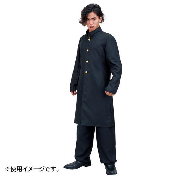 SMART 長ラン MJP-764【送料無料】