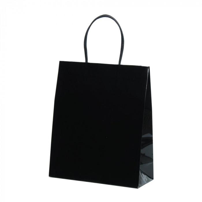 紙袋パックタケヤマ 手提袋 STB プリティ 黒 10枚×10包 XZT00806【送料無料】