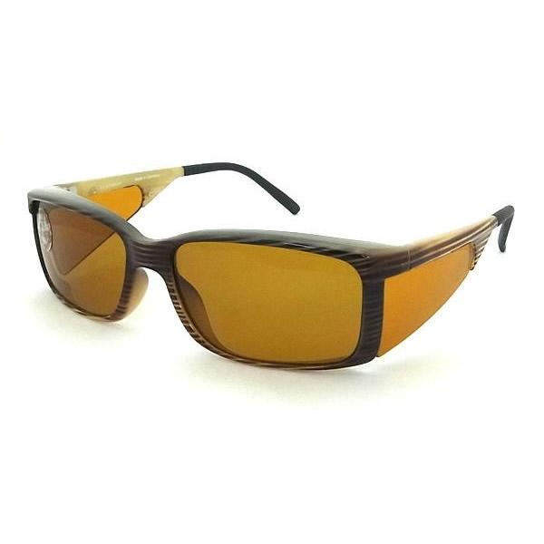 UVカット 偏光めがね 眼鏡エッシェンバッハ ウェルネス・プロテクト 遮光眼鏡 偏光 小・No1663-175P【送料無料】
