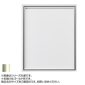 アルナ アルミフレーム デッサン額 IC ゴールド F-10(670×595)・284【送料無料】