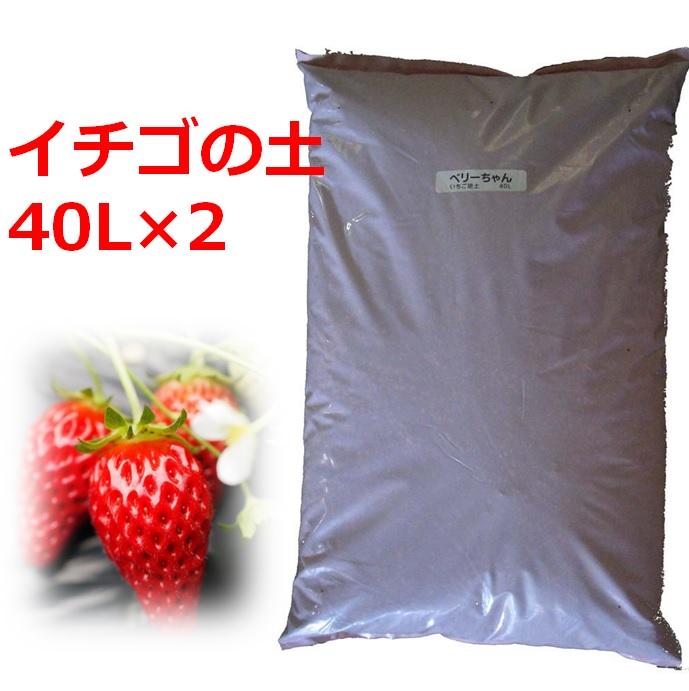 在庫一掃 送料無料 イチゴの苗づくり専用培養土 40L 2袋セット 土 ブランド買うならブランドオフ 育苗 ポット いちご 苗