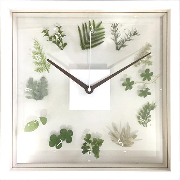 掛け時計 アナログ スイープ秒針 木枠 観葉植物 四角 (観葉時計)CDC50926