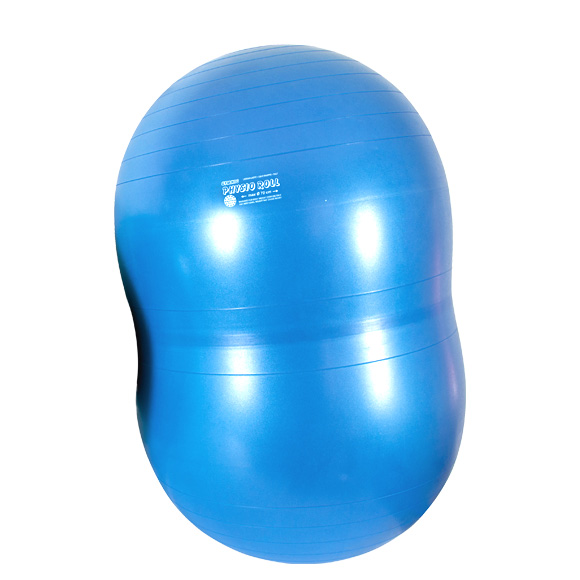 ギムニク バランスボール フィジオロール プラス70 70cm Physio Roll Plus (GY88-13) エクササイズ ヨガ ボール ピラティス 【 送料無料 】