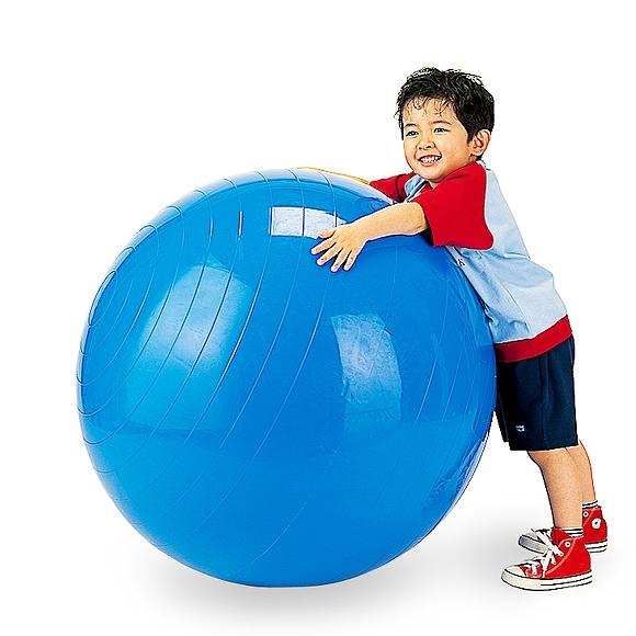 ギムニク バランスボール ギムニクボール95 フィジオギムニク 95cm ブルー (GY95-95) エクササイズ ヨガ ボール ピラティス 【 送料無料 】