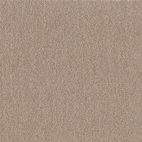 【送料無料】東リ ペット用タイルカーペット(40×40cm 10枚入り)モカ WPF03