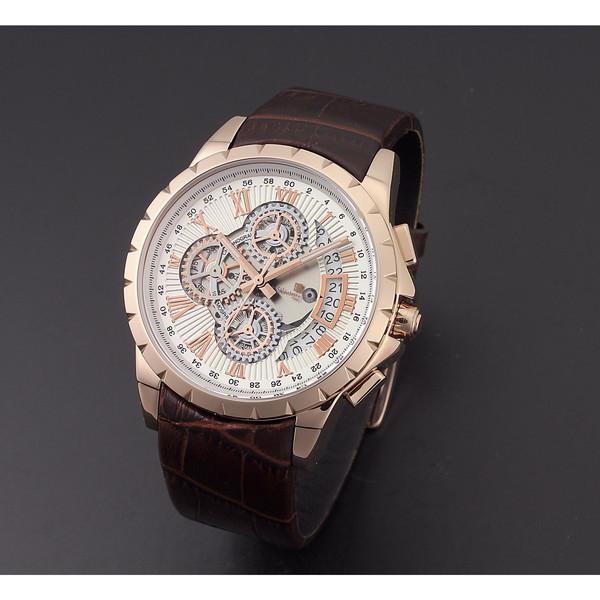 【送料無料】Salvatore Marra SM13119S-PGWH [腕時計 (クオーツ・メンズ)]