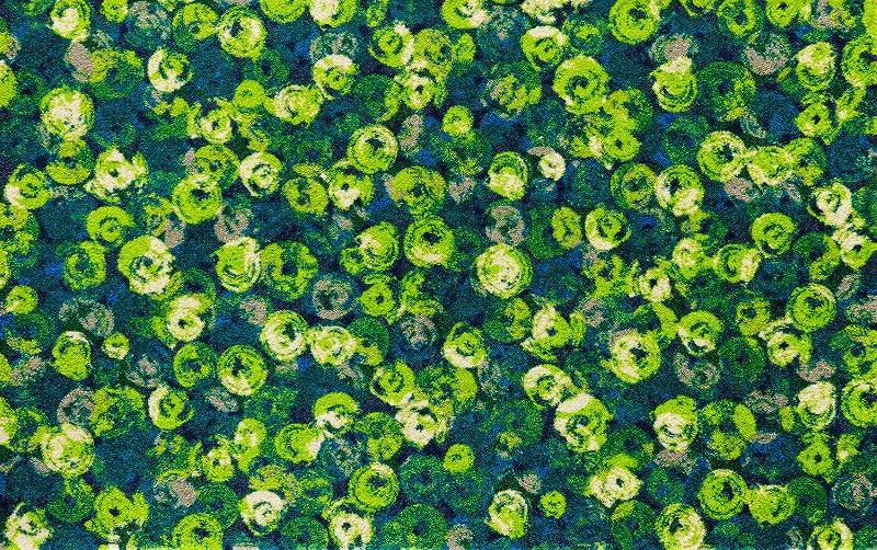 【送料無料】クリーンテックスジャパン K015I Punilla green 110×175cm[フロアマット 玄関マット ラグ デザインマット 滑り止めマット フローリング]【離島配送不可】