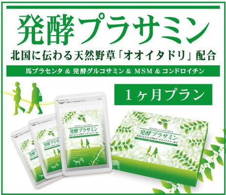 送料無料【発酵プラサミン 80粒×3袋(約1ヶ月分)】