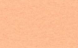フェルト 手芸 ハンドメイド 手作り Kフェルト18×18cm ライトオレンジ KT-1001 値引き メール便 高い素材 No.130 宅配便可