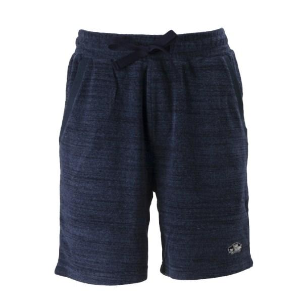 【VANSウェア】Easy Shorts ヴァンズ ショーツ 19SVANP09 BLUE