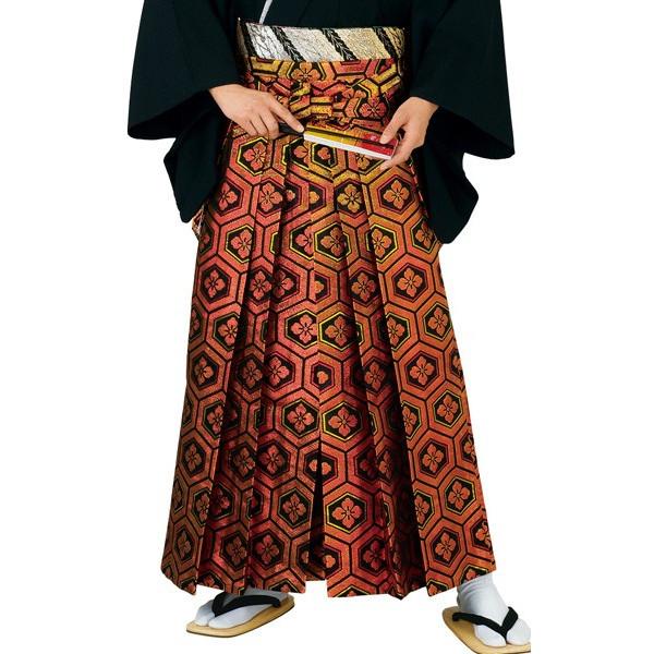 舞踊袴 踊り衣裳 福印 5595
