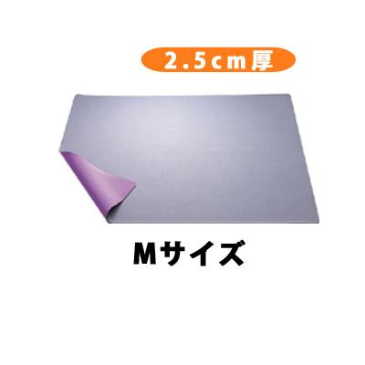バイオラバーマット「Mサイズ(100cm×60cm)」【送料無料】