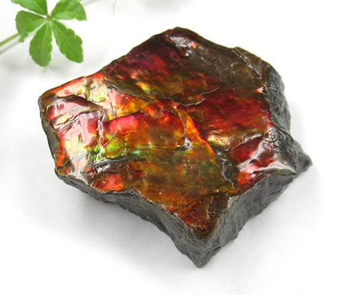 アンモライト(アンモナイト)七色の繁栄の石 anmo155
