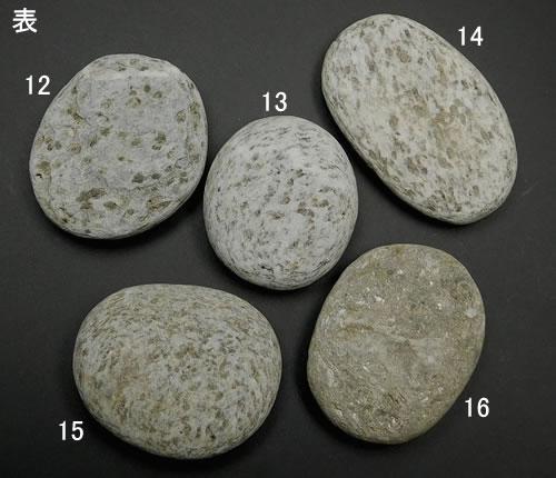 用来使新西兰龙鸡蛋'龙当做朋友,得到能源的胚芽性的具体化'H&E天堂和地线社编程已经的天然的石头功率斯通newd006