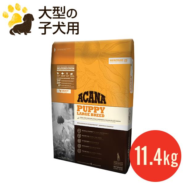 【正規品】アカナ パピーラージブリード 11.4kg 大型犬/小犬用/大粒 ドッグフード (賞味期限2019.10.26)