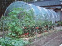 雨よけハウス A-25 【送料無料】 家庭菜園の決定版!プロも推奨する雨よけハウス!!