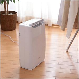 アイリスオーヤマ 衣類乾燥除湿機 デジカント式 DDA-20【送料無料】