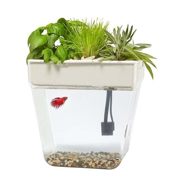 水槽 循環型 ウォーター ガーデン エコ ハーブ アクアリウム 自然 生態系 インテリア