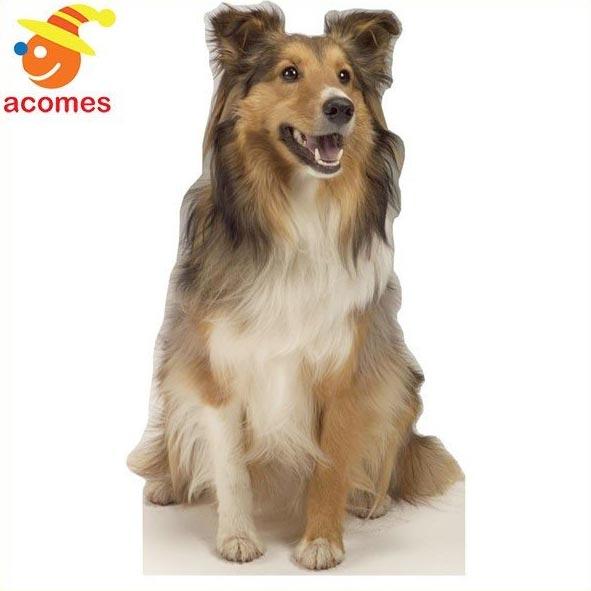 コリー 等身大 パネル リアル 動物 犬 イヌ 立て 看板 動物園 イベント 飾り 年賀状 戌年