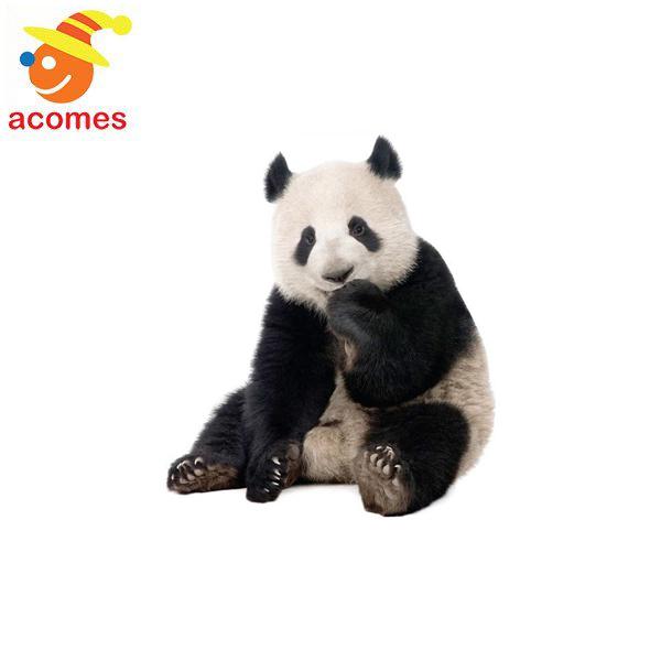 ジャイアントパンダ 等身大 パネル リアル 動物 パンダ 立て 看板 動物園 イベント 飾り