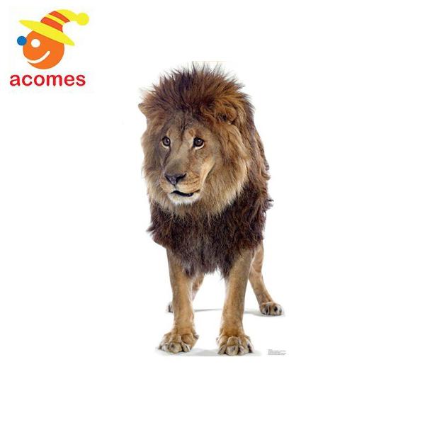 ライオン 等身大 パネル リアル 動物 立て 看板 動物園 イベント 飾り