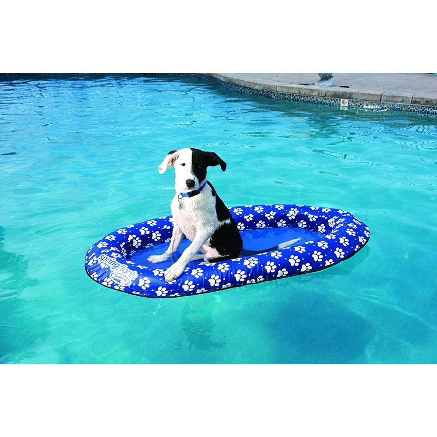 ペット 犬 浮き輪 ワンちゃん フロート 小型犬 うきわ 水遊び 浮輪 ワンにゃんDAY 年賀状 戌年 インスタ