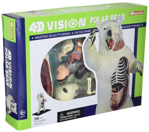 シロクマ 動物 解剖 模型 立体 モデル 4D 教材 生物 入学祝い ホッキョクグマ