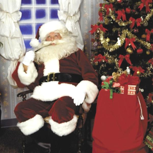 サンタ コスプレ サンタ サンタクロース サンタクロース コスチューム コスチューム クリスマス ホワイトフォックス風ファーつきサンタの本格派コスチューム, テューリサーリ:4cb0fb59 --- officewill.xsrv.jp
