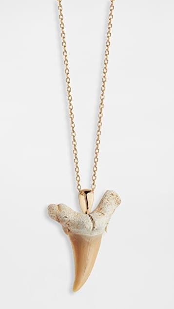 14k Gold Shark Tooth Necklace レディース