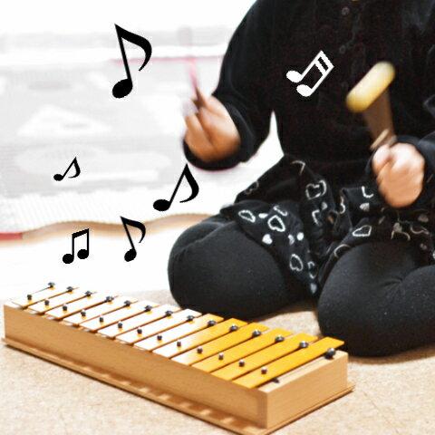 モデルグロッケン アルト・D(ガイドブック付き) 誕生日 入園入学プレゼント 音色が綺麗な 本格打楽器 知育玩具 楽器玩具 楽器 おもちゃ【送料無料】STUDIO49 stgad