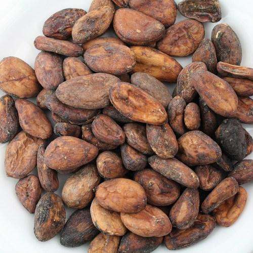 フルーティーな酸味 カカオ生豆 ●スーパーSALE● セール期間限定 1KG 通販 激安 ショコラマダガスカル