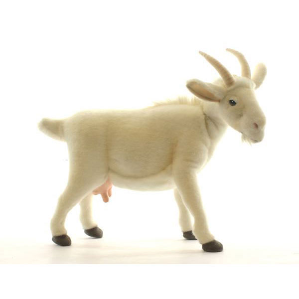 Agogonus Hansa White Goat 48 L 48 Cm 4152 Cute And Realistic In